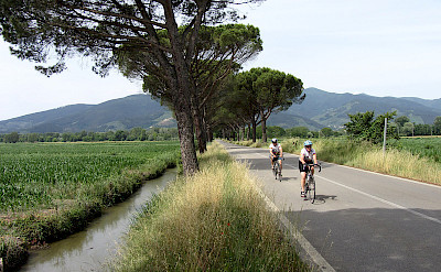 Biking the countryside on the Venice to Florence Italy tour.