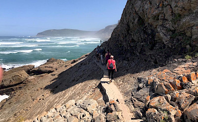 Hiking the Garden Route in South Africa.