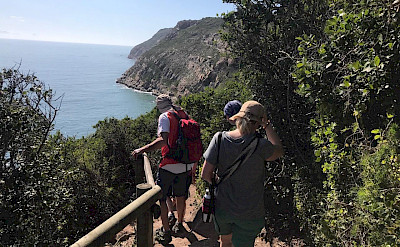 Hiking Garden Route in South Africa.