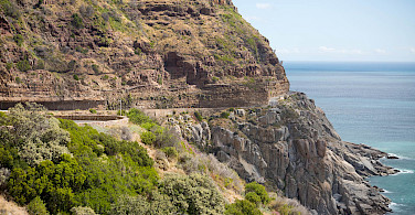 Rugged seascapes are your backdrop as you cycle the Garden Route