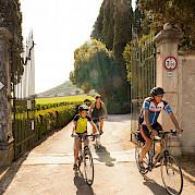 Lake Garda and the Veneto Photo