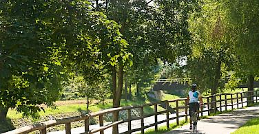 Biking the quiet paths on the Lake Garda & Veneto Bike Tour. Photo via TO
