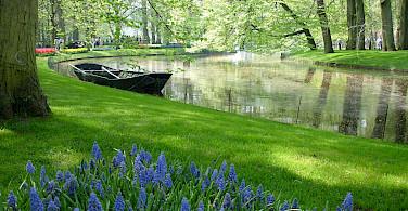 Keukenhof is near Lisse in South Holland province, the Netherlands. Flickr:Borkur Sigurbjornsson