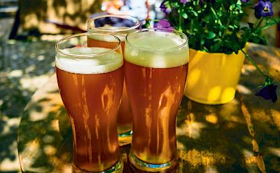 Beer tasting in Belgium's many favorites!