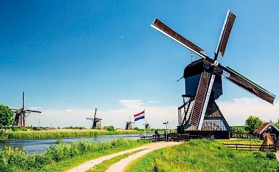Biking through the Kinderdijk in the Netherlands.
