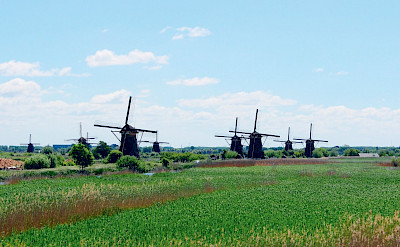Windmills dot the landscape in Holland.