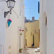 White villages dot the Puglia landscape, such as Salento here. Flickr:Untalented Guy