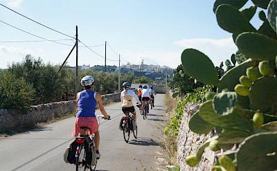 Biking the Matera to Lecce route in Puglia, Italy.
