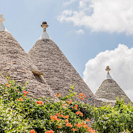 You'll see the tops of the trullis well before reaching them in Alberobello, Puglia, Italy. Flickr:N i c o l a