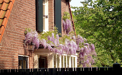 Lovely brick homes in Rhenen, the Netherlands. Flickr:edronkert