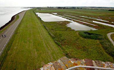 Zeeland has lots of green islands in the Netherlands. Flickr:Ed Ronkert