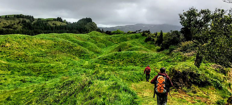 The Green Island of the Azores Archipelago