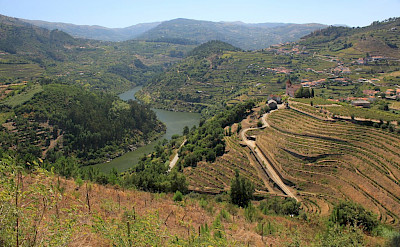 Douro Valley in Portugal. Flickr:Jonathan Pincas