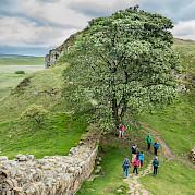 Hadrian's Wall Photo