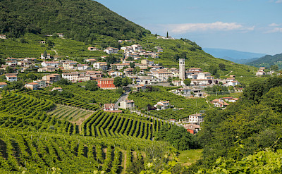 Valdobbiadene is famous for its Prosecco! Creative Commons:Alberto Davide Lorenzi