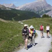 Classic Banff Hiking Tour Photo