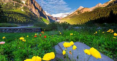 Spring at Lake Louise Banff Park, Alberta, Canada. Photo via Flickr: Jay Huang
