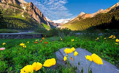 Spring at Lake Louise Banff Park, Alberta, Canada. Flickr:Jay Huang