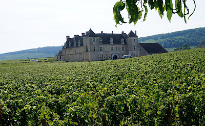 Chateau du Clos de Vougeot, in Vougeot, France. Flickr:Pierre Andre Leclercq