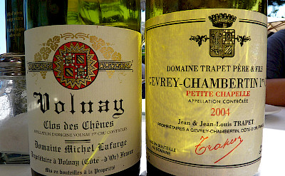 Gevrey-Chambertin wines on this walking tour in Burgundy, France. Flickr:dpotera