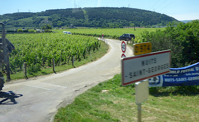 Entering Nuits-Saint-Georges in Burgundy, France. Flickr:Elliott Brown