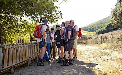 Regrouping at Capo Pecora while hiking the Costa Verde Walking Tour in Sardinia, Italy.
