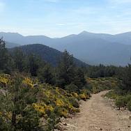 Quiet roads to hike on the Segovia Spain Hiking Tour. Photo via TO