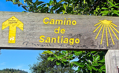 Hiking the sign-posted Camino de Santiago in Spain. Flickr:BanxietyFree