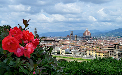 Florence in province Tuscany, Italy.