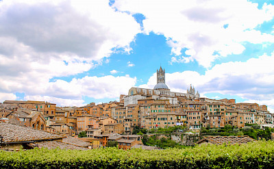 Siena in Tuscany, Italy. Flickr:Paul Maraj