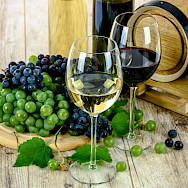 Delicious wines all through Italy, of course!