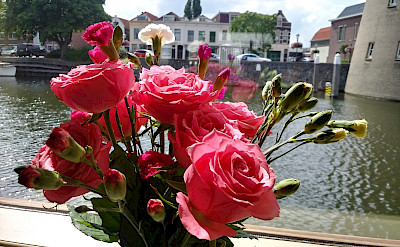 Flowers | Aurora | Bike & Boat Tours