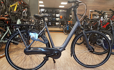 7 gear Gazelle rental bikes