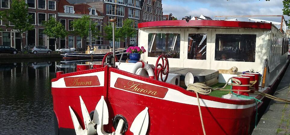 Docked | Aurora | Bike & Boat Tours