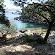 Marjan Park Forest in Split, Croatia. Flickr:So Many Desks