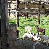Omorani Village, Macedonia.