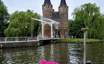 Tower and bridge en route Luxury Tulip Tour in Holland.