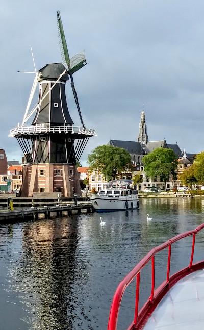 Windmills on the Luxury Tulip Tour in Holland.