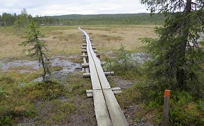 Duckboard through marsh in Pallas-Yllästunturi National Park, Western Lapland, Finland. Photo via TO