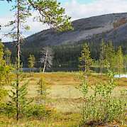 Finland's North Country & Western Lapland Photo