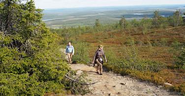 Ascending to Katkatunturi Fell, Pallas-Yllästunturi National Park, Western Lapland, Finland. Photo via TO