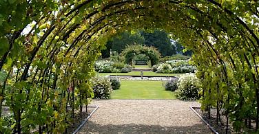 Green gardens of Kent, England. Flickr:MattLake