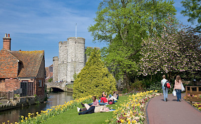 Stour River in Canterbury, England. Creative Commons:Diliff