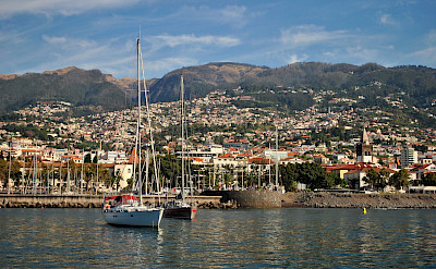 Funchal, Portugal. Flickr:Ed Clayton