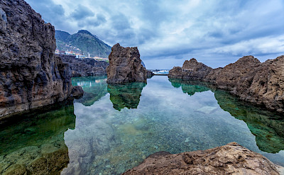 Swimming perhaps at Porto Moniz, Madeira Island, Portugal. ©TO