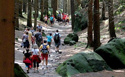 Bohemian Switzerland National Park, Czech Republic. Flickr:donchili
