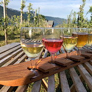 Cider tasting in Balestrand, Norway. Photo via TO.