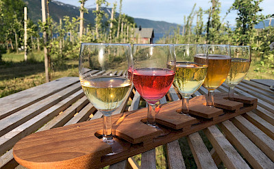 Cider tasting in Balestrand, Norway. Photo via TO.