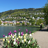 Bergen, Norway. Photo via TO