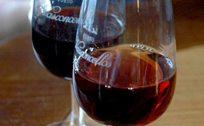 Local red wines in Portugal. Flickr:Pug Girl